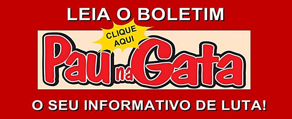Leia o Boletin Pau Na Gata